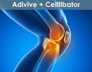Adivive + Celltibator